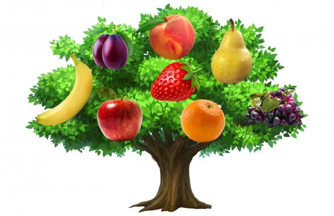 Válassz! A kedvenc gyümölcsöd feltárja egy fő jellemvonásodat!