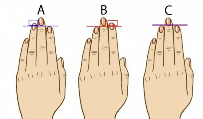 Kiváncsi vagy, mit árul el az ujjad hossza?