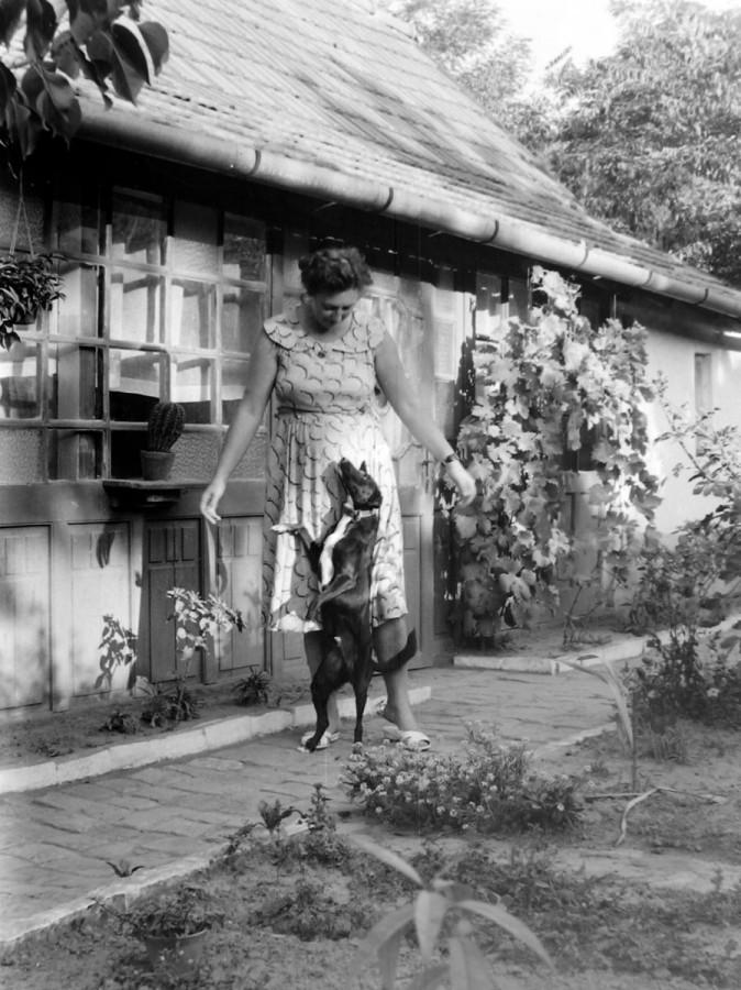 Mutatjuk, hogy éltek régen a magyarok: gyönyörű kertjeik voltak