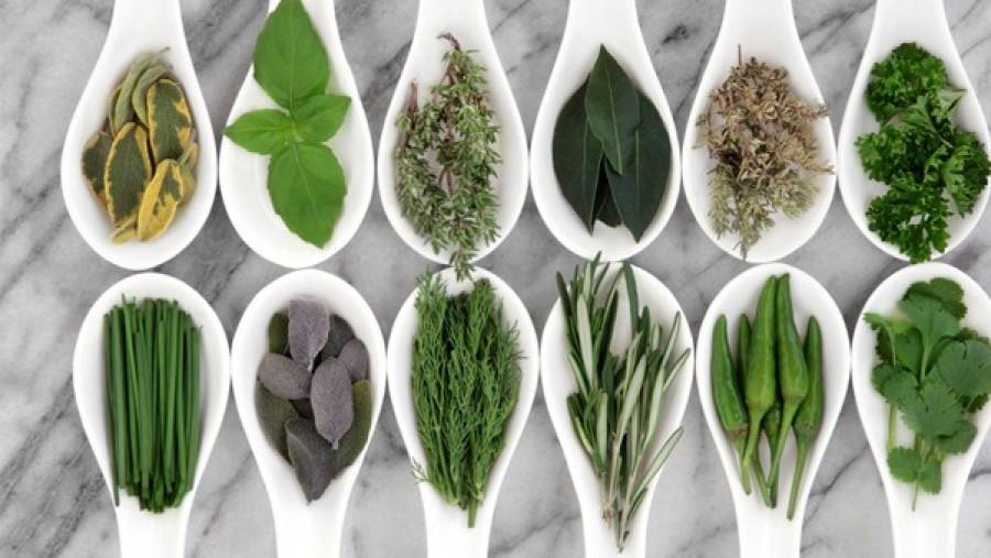 A fűszerek és gyógynövények tartósításának praktikái