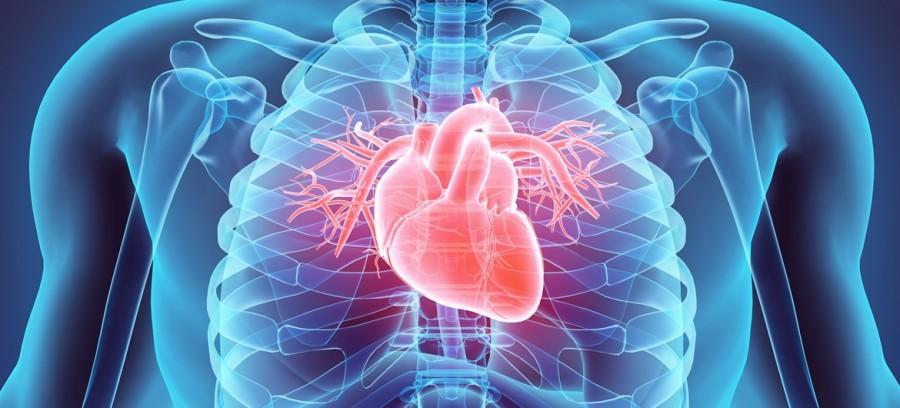 Itt a világ első, dobogó, mesterséges szíve