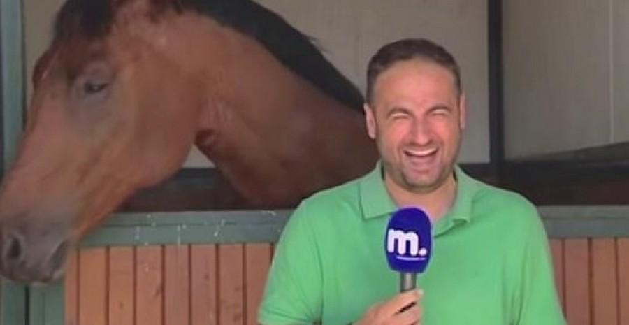 Nem csak a riporter, mi sem tudjuk abbahagyni a nevetést! Láttad már?