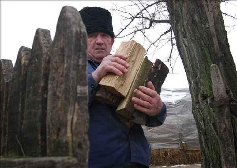 Minden fával fűtő figyelem! Érkezik az ingyen fa! Mutatjuk a részleteket!