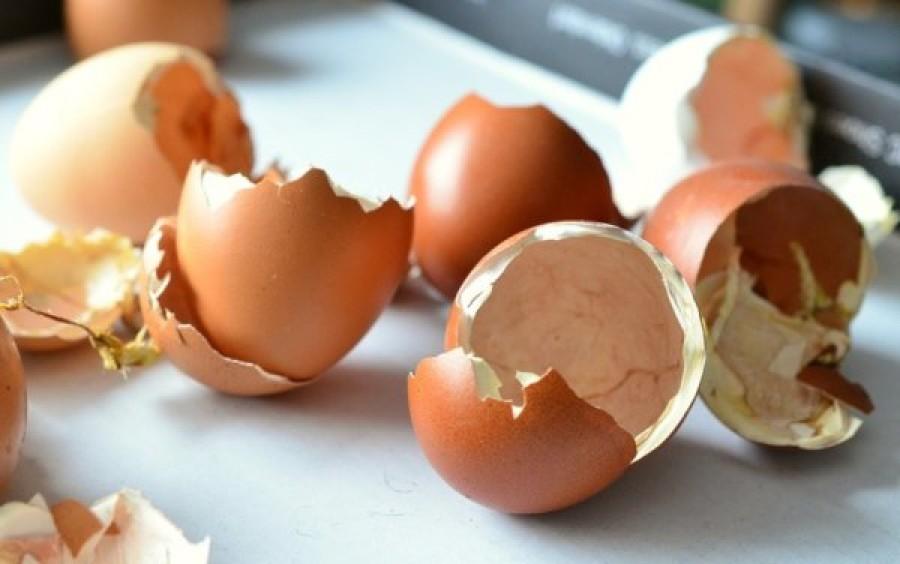Ezért nem szabad kidobni a tojás héját!